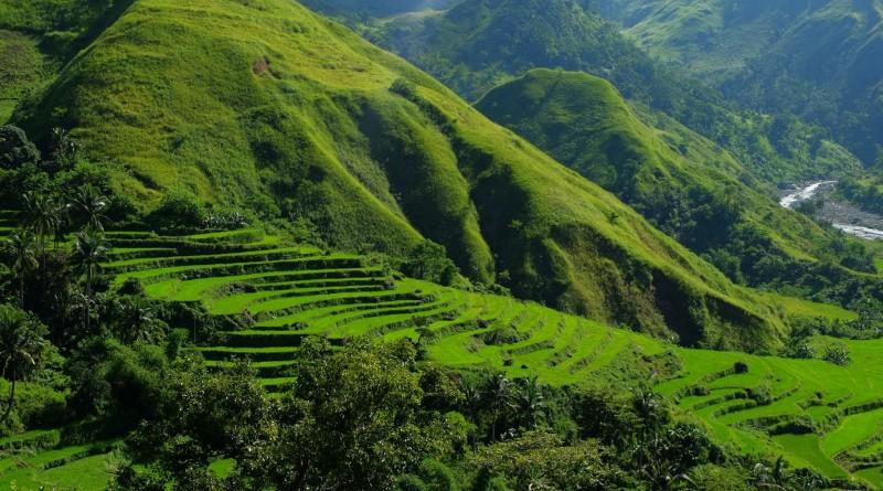terrazas de arroz san remigio