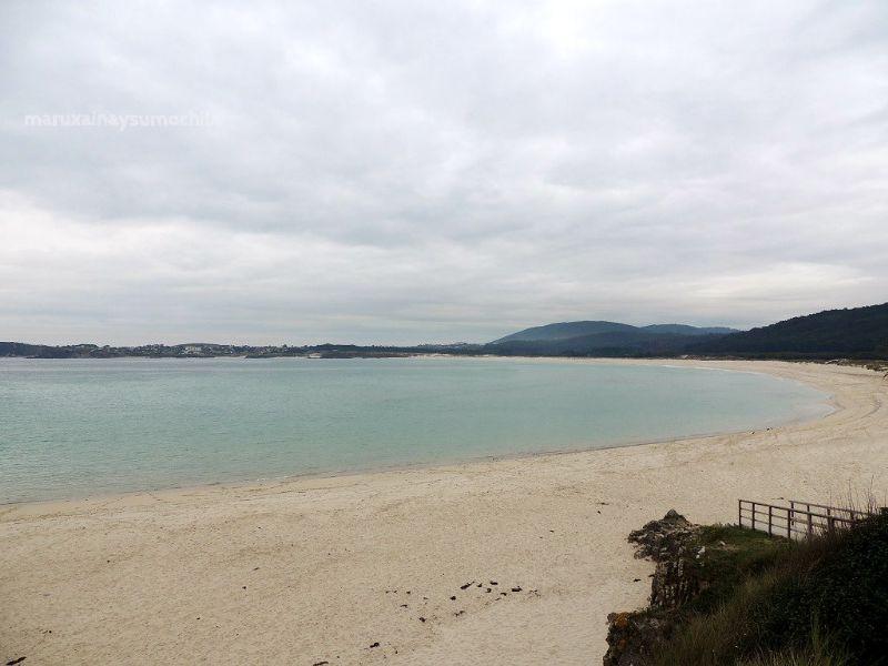 Ferrol Terra